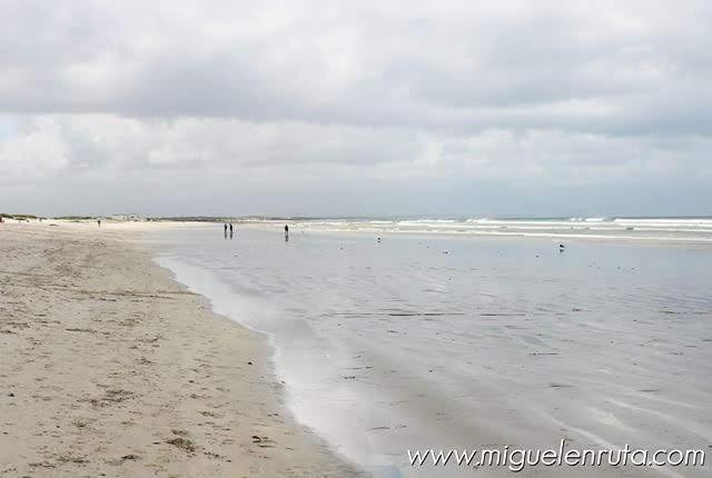 Arena-blanca-Muizenberg-Beach-Sudafrica