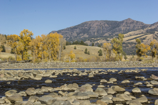 The junction of the Lamar River and Soda Butte Creek in Yellowstone National Park