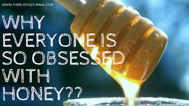 Why Everyone is so Obsessed with Honey??