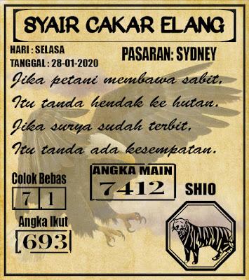 SYAIR SYDNEY 28-01-2020