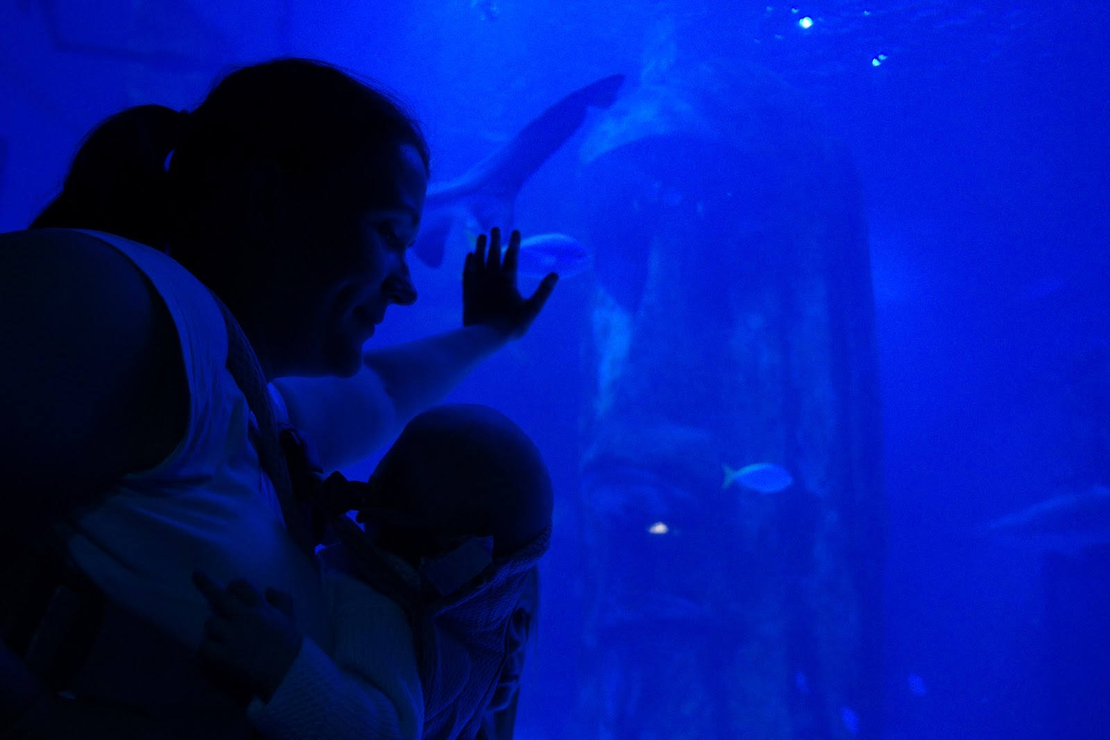 woman and baby in front of fish tank