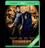 LOS HERMANOS GRIMSBY (2016) WEB-DL 1080P HD MKV ESPAÑOL LATINO