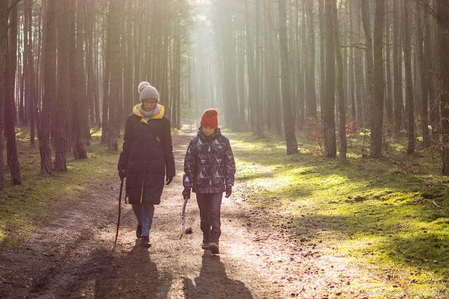 ścieżka edukacyjna w rezerwacie Mewia  Łacha