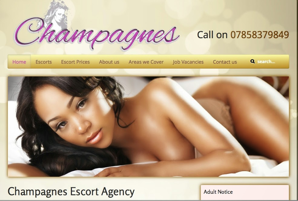'Champagnes Escort Agency – adult notice'