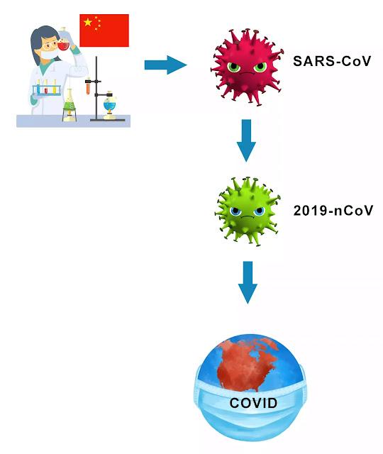 Коронавирус создан в китайской лаборатории
