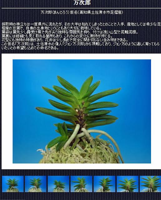 http://www.fuuran.jp/jiman_manjirou.html