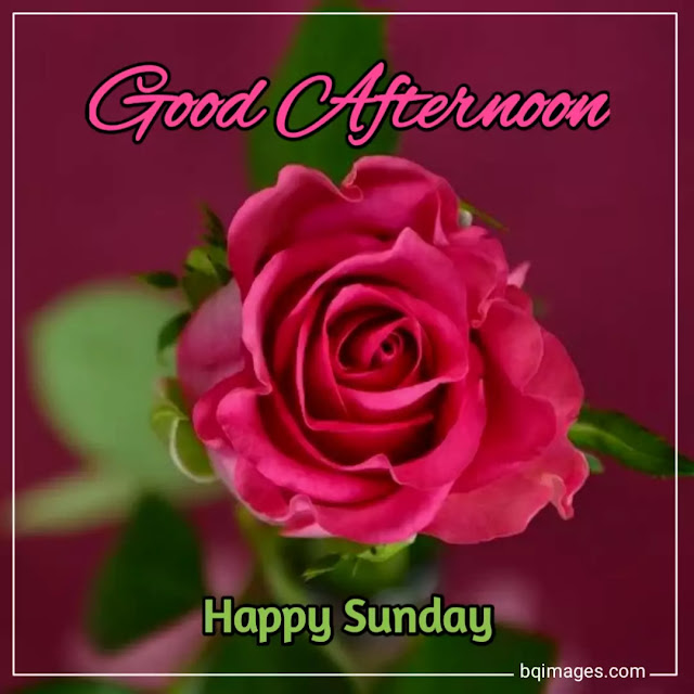 good afternoon sunday pictures