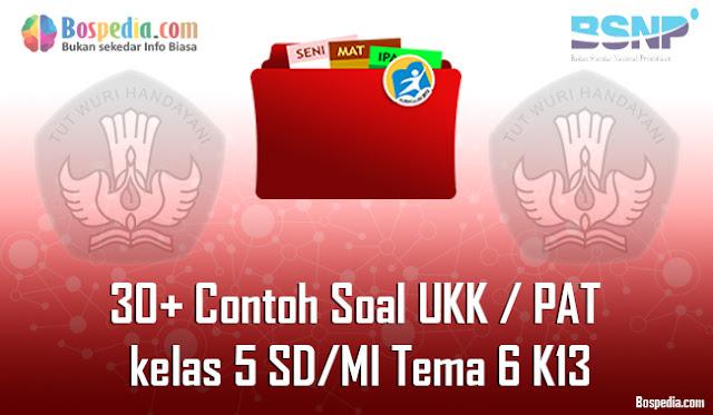 30+ Contoh Soal UKK / PAT untuk kelas 5 SD/MI Tema 6 K13