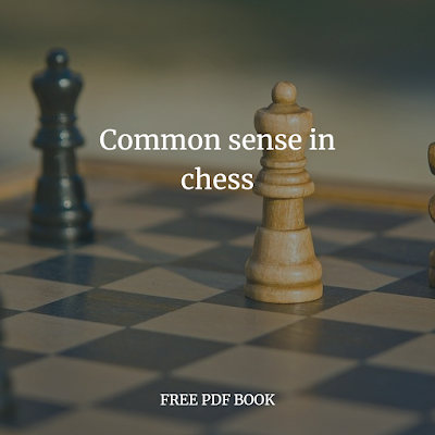 Common sense in chess 1910