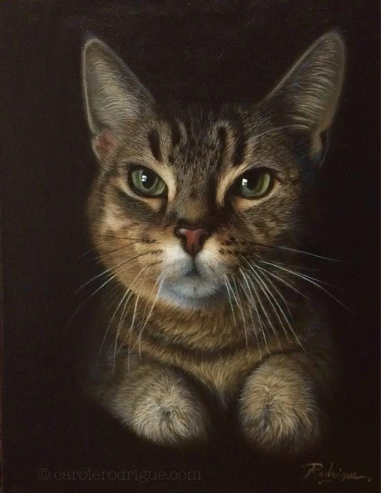 Carole Rodrigue Fine Artist Specializing In Pet Portraits