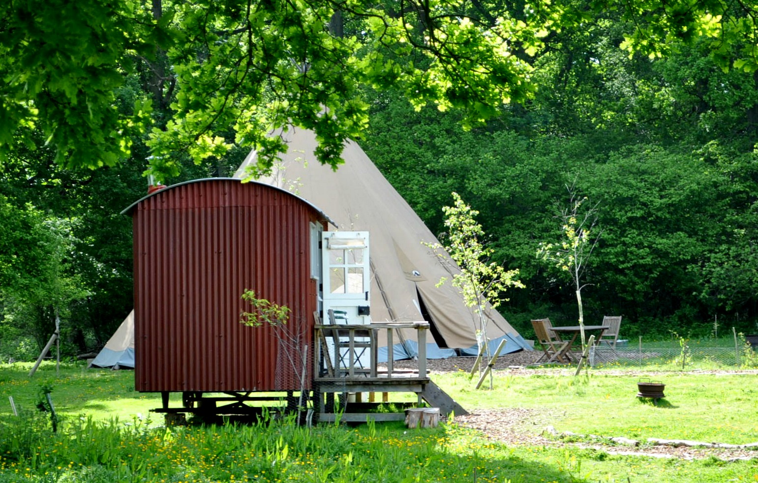 Canopy & Stars, glamping, nature, safari, Knepp Wildland Safari