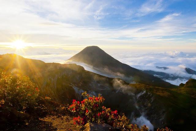 Công viên có diện tích rộng lớn và có thiên nhiên phong phú, bao gồm hai ngọn núi lửa - Núi Gede và Núi Pangrango. Đây cũng là nhà của các loài động vật có nguy cơ tuyệt chủng. Do đó, đi bộ đường dài, chiêm ngưỡng vô số các loại động vật hiếm lạ là hành trình yêu thích của khách du lịch.