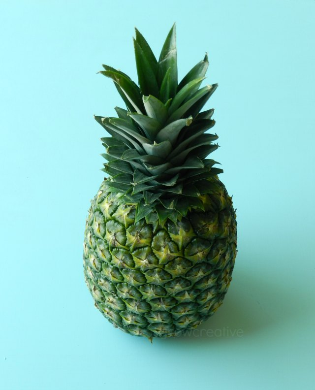 Tropical Pineapple Photo: Grow Creative Art