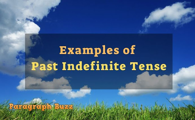 Examples of Past Indefinite Tense