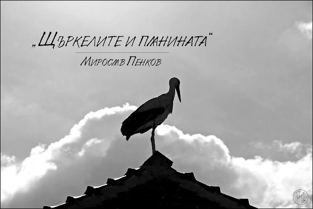 Щъркелите и планината, Мирослав Пенков