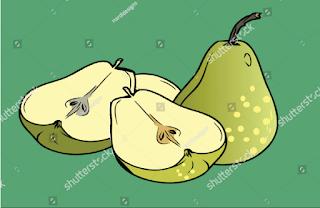 draw illustration pears
