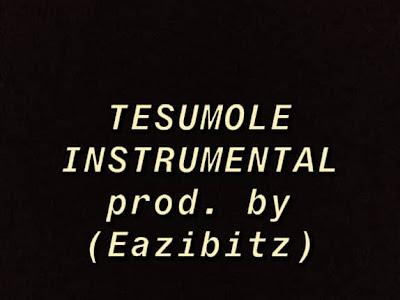 Naira Marley - Tesumole Instrumental ( Reprod. by eazibitz)