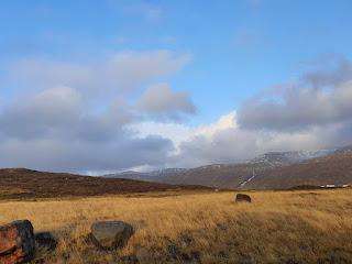 Padang Rumput Faroe Islands