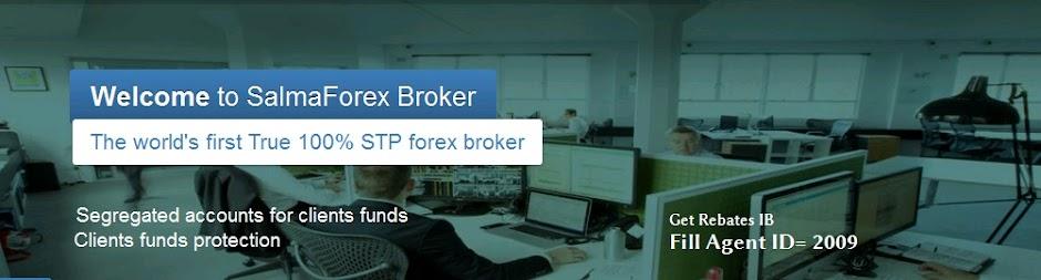 Salma Market The Best Forex Broker - EarnLib