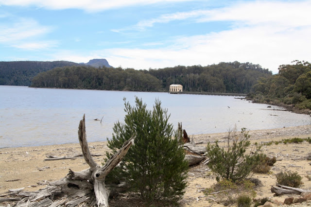 Lake St Clair Great Short Walk Tasmania