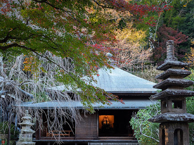 Autumn leaves: Tokei-ji