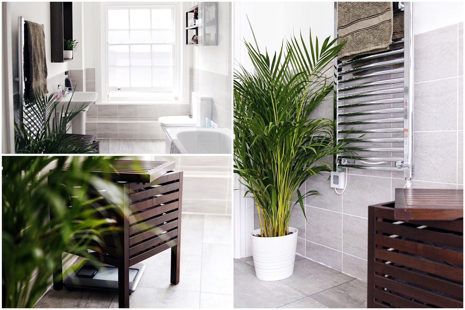 Photo montage of concrete botanical bathroom with IKEA Molger furnishings.