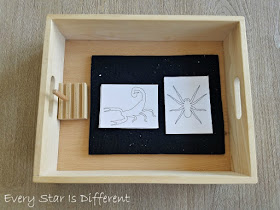 Arachnid Pin Poking and/or Cutting Activity