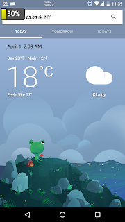 Google-Weather-frog