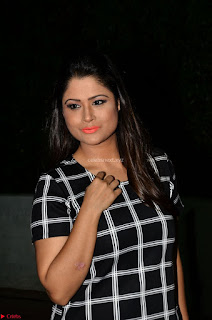 Shilpa Chakravarthy in Dark blue short tight dress At Srivalli Movie Pre Release Event ~  Exclusive Celebrities Galleries 029