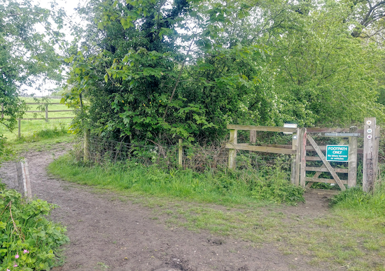 Continue on on Shenley restricted byway 45 ignoring the path to the right