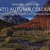 Trekking into the Autumn Colours