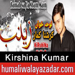https://aliwalayazadar.blogspot.com/2020/08/kirshina-kumar-nohay-2021.html
