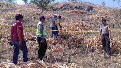 Menghilang 20 Hari, Warga Sukolilo Ditemukan Meninggal di Ladang Jagung