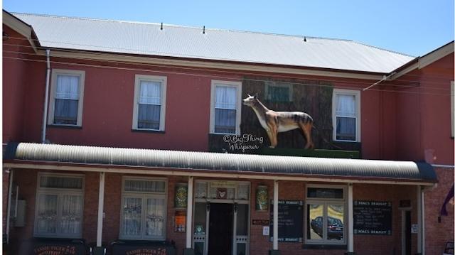 BIG Thylacine in Mole Creek | BIG Things Tasmania