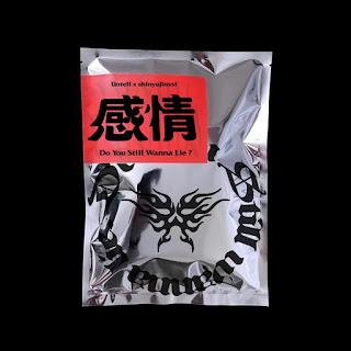 [Mini Album] Untell X shinyujinssi - Do You Still Wanna Lie MP3 full zip rar 320kbps