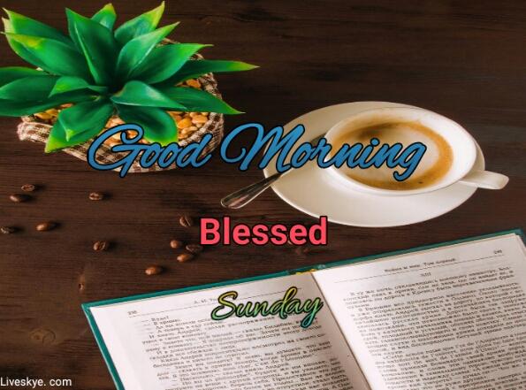 10+beautiful good morning imeges with sunday, liveskye