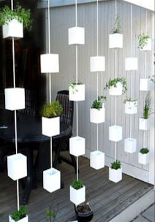 jardín chingon para tu casa