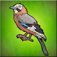 Play Games2Jolly The Jay Bird …