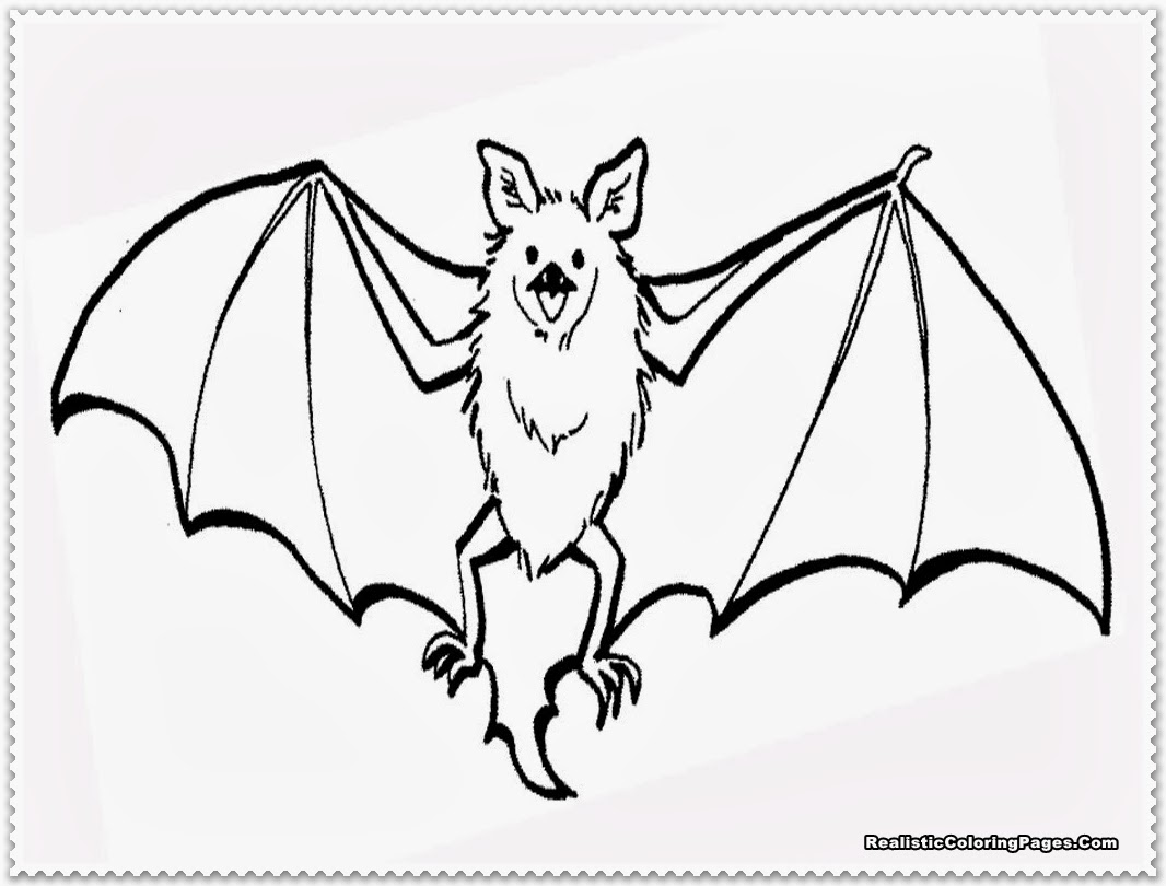 bat coloring pages free printables likewise cute bat coloring pages