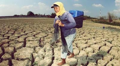 Kekeringan yang terjadi di Indonesia - berbagaireviews.com