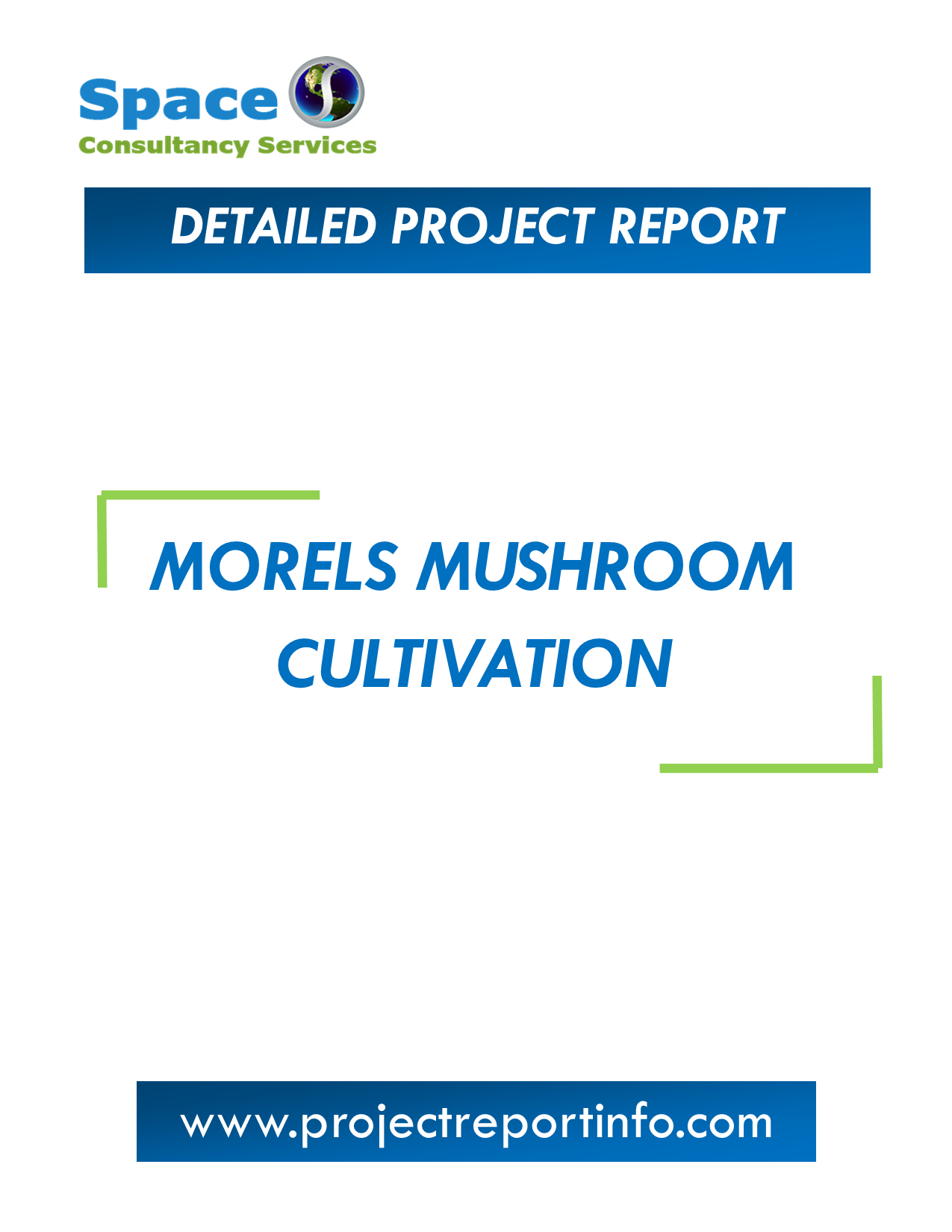 Project Report on Morels Mushroom Cultivation