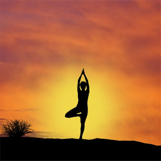Siddha Yoga