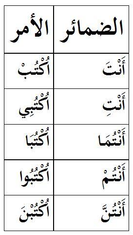 Pengertian Fi'il dan pembagian Fi'il (Madhi, Mudhori' dan