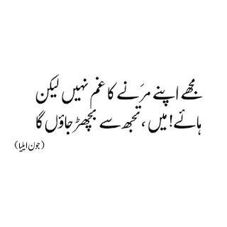 Mujhay Apnay Marnay ka Gham nahi Lekin | Jaun Elia - Urdu Poetry Lovers