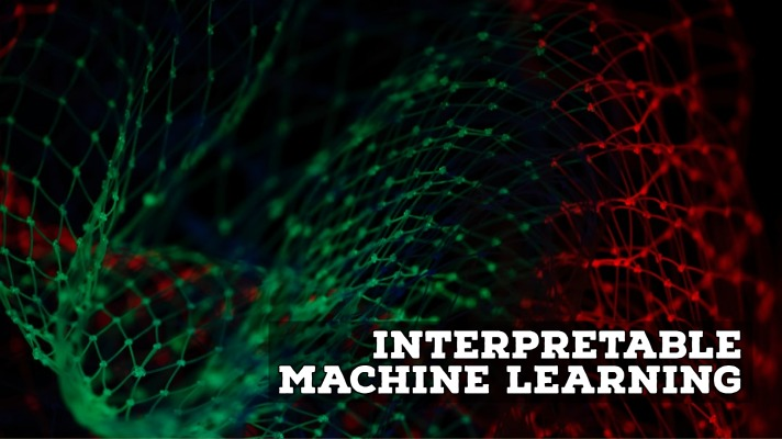 interpretable machine learning