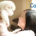 毛小孩須知 – 與寵物相關的皮膚病