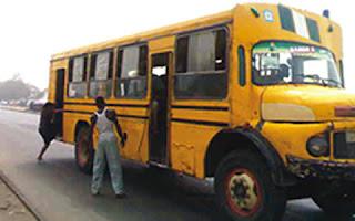 the molue public bus
