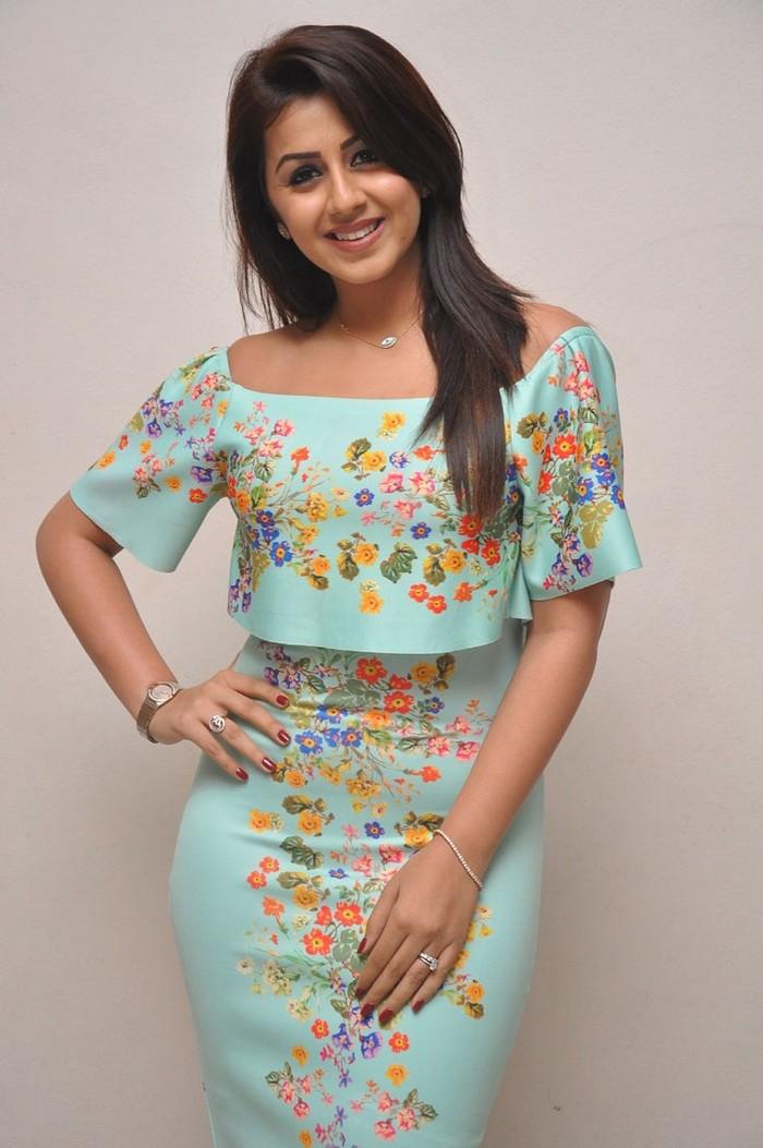 Nikki Galrani At Marakathamani Success Meet Gallery