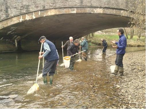 Riverfly volunteers taking samples from the River Torridge in 2014. Photo copyright Devon Wildlife Trust