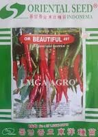 lmga agro, benih cabe, cabe, cabe merah, or beautiful, harga murah, toko online